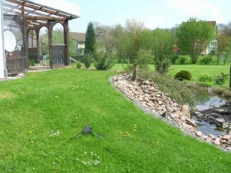Het terras met een grasveld